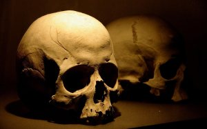 skull_2_hd_widescreen_wallpapers_1920x1200